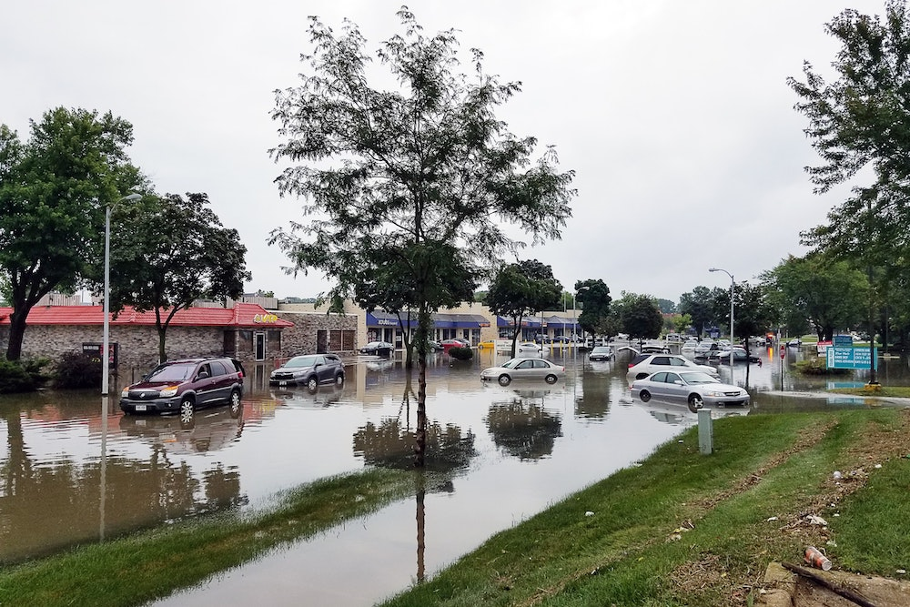 flood insurance Land O Lakes FL